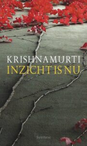Inzicht is Nu – De Pocket Krishnamurti